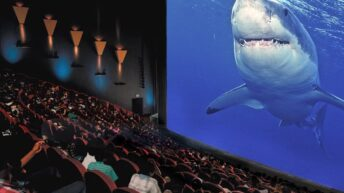 Maritime Aquarium to reopen its IMAX Theater for 7 weeks before it closes for good