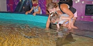 "Maritime Aquarium's ""Gratitude Days"" Nov. 23-25 makes free tickets available to broad list of essential workers"