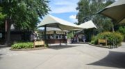 Connecticut's Beardsley Zoo Temporarily Closes Effective March 17 as a Public Health Precaution